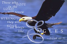 Isaiah 40:31 ~ Click Here for Orginal Image Size